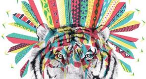 Soirée Tribal Dance – Tigre Yoga Club Rive Gauche – vendredi 18 décembre